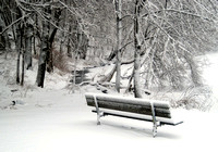 'Winter Bench' - Amesbury, MA
