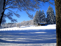 Maudslay State Park in the Winter